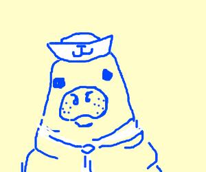Litteral navy seals