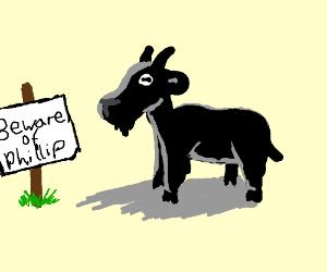 Phillip the Black Goat