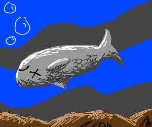A fish drowning