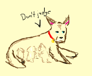 "A dog breastfeeding shouting ""Don't judge"""