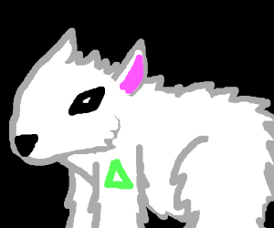 White bear dog with a triangle tattoo.