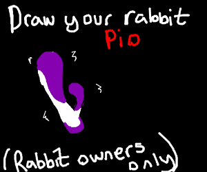 Draw your rabbit P.I.O. (rabbit owners only)