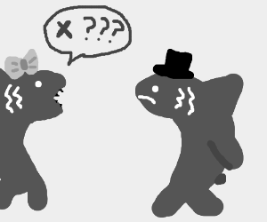 shark wife asks husband if something is wrong