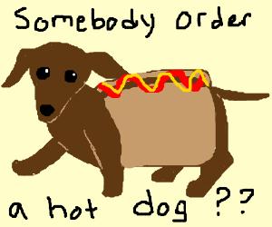 Small Dog Tells Bad Pun