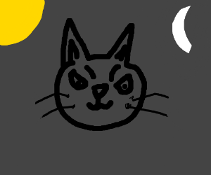 a very angry cat in darkness