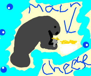 an individual manatee eating mac and cheese drawing by this is my
