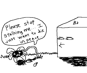 A box stalking a dying flower.