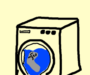 Living sock is dying in washing machine