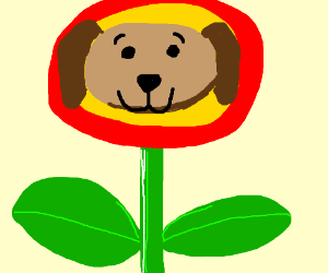 Fire flower with a dog face
