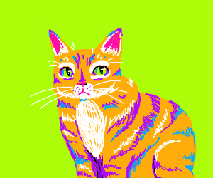 Orange cat at green background