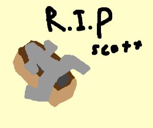 Scott's Coffin