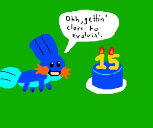 Mudkip's birthday