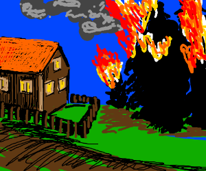 Trees on fire near house