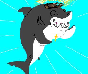 Jesus Shark