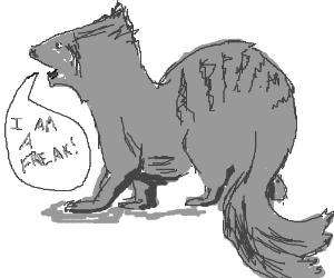 Gef the talking mongoose