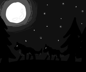 Two wolves in the forrest under a full moon