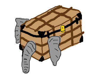 closeup of an elephant trunk