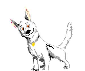 Bolt the dog.