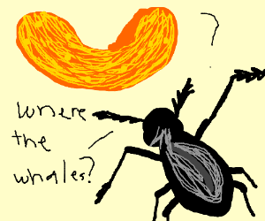 Bug looks at a cheeto and can't see any whales