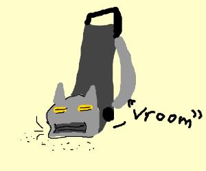 hoover cat
