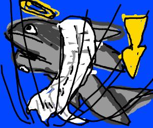 two headed fallen angel shark