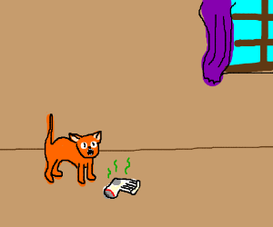 Smelly Sock Scares Cat