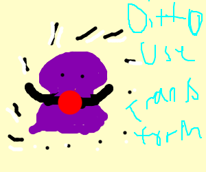 Ditto's amateur disguise