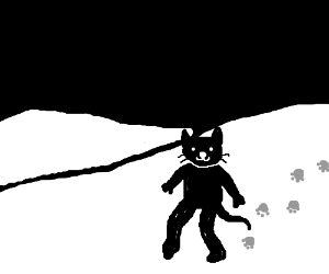 Bipedal black cat on snow