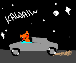 Kawaii cat drives away