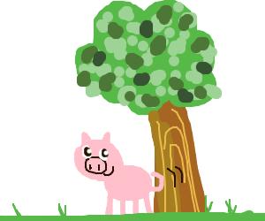 Swining on a tree