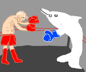 Old man boxing a dolphin