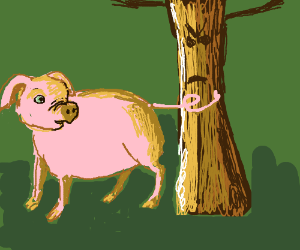 Pig uses his tail to hit a tree