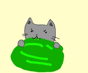 kawaii kitty ties to eat an uncut watermelon