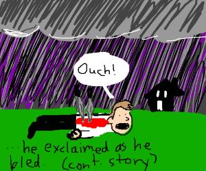TheSwordsFellOnAGuy&StabbedHim (story pio)