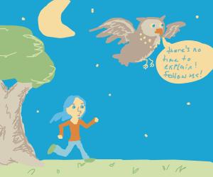 No time to explain; follow the owl