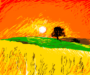 Sunset over a grassy field