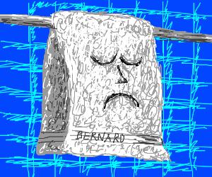Depressed towel named Bernard