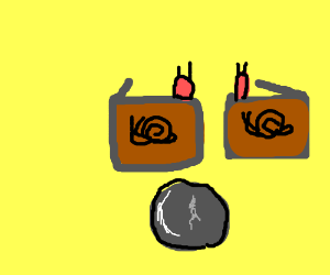 snail boxes with a rock