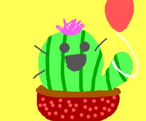 Pet cactus. Fun! Love! Cute!