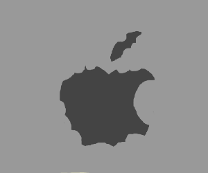 Apple: made in china