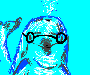 Dolphin with spectacles