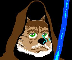 Obi Wan Catnobi
