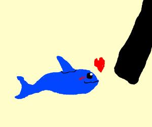 Anime shark flirting with censored bar