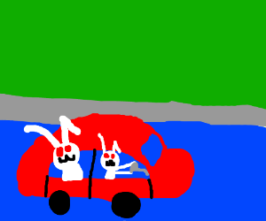 Fluffy bunnies driving in the pool!