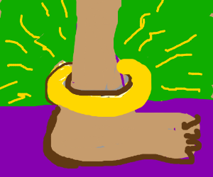 An Anklet
