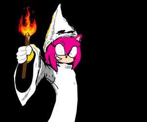 Female Hedgehog Joins The KKK