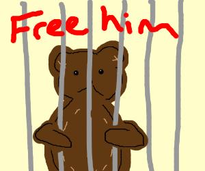 Poor teddy stuck in jail