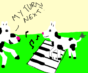 Cow plays Piano