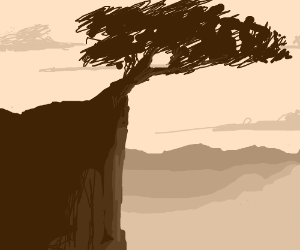 A tree is on top of a cliff.