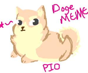 Doge MEME PIO